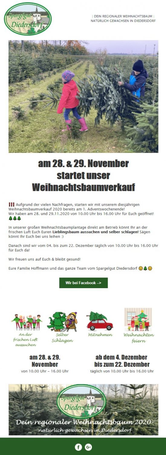 Weihnachts-E-Mail Familienaktion