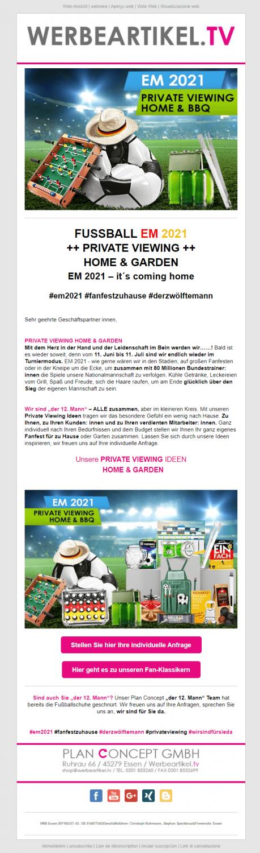 Beispiel für Sommer-Newsletter_EM