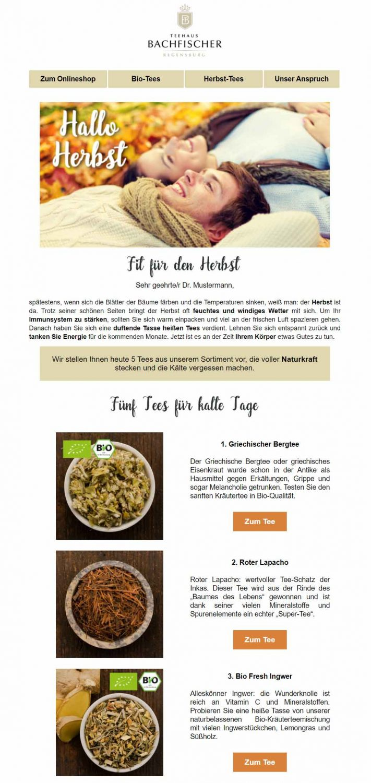 Newsletter Herbst Kundenbeispiel