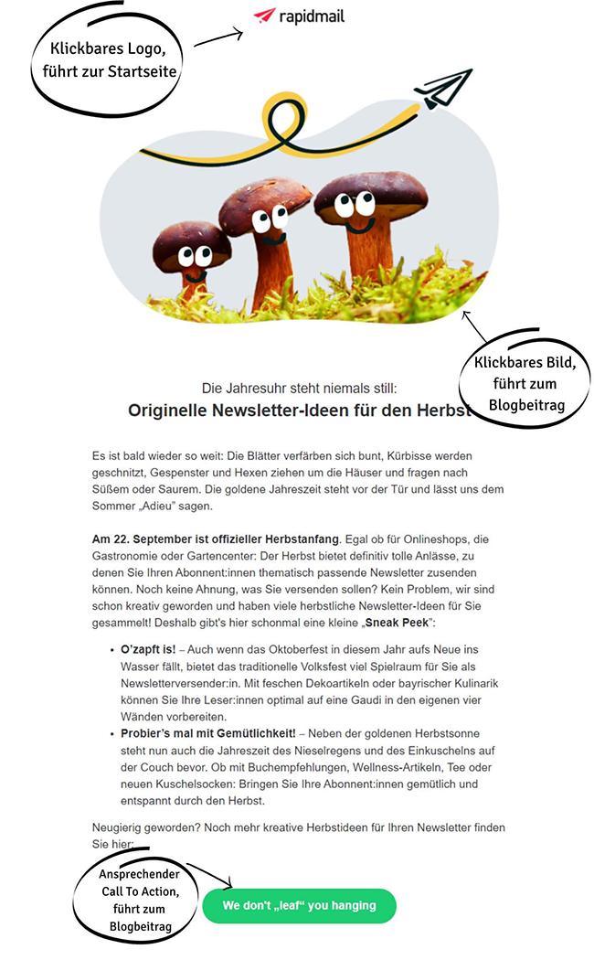 Interaktiver Newsletter