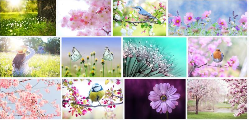Frühlings-Newsletter